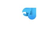 Siti Web Torino Logo